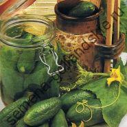 "Огурец-корнишон сорт ""KGS"" (kleine groene scherpe) 10 семян"