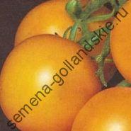 "Томат ""ПОНДЕРОСА"" (Ponderosa) 10 семян"